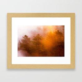 Golden Morning Glory Forest Framed Art Print