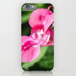 Himalayan Balsam iPhone Case