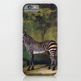 Zebra - George Stubbs iPhone Case