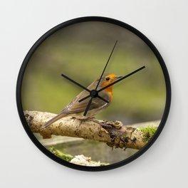 Robin Redbreast. Wall Clock