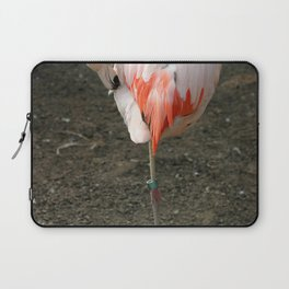 Chilean Flamingo Laptop Sleeve