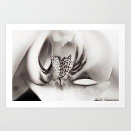 Orchid Closeup II Art Print
