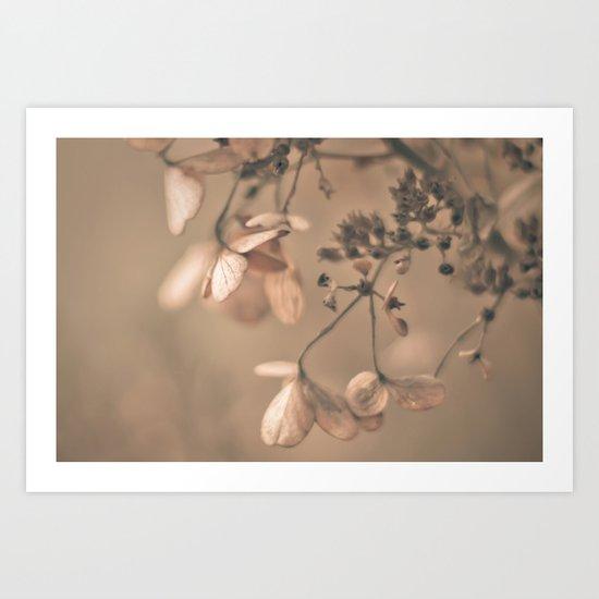 Daydream in Pink Art Print