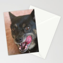 Lucie Stationery Cards