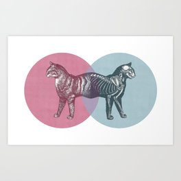 In which the cat is dead and alive Art Print