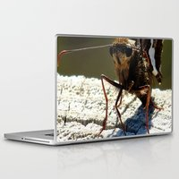 moth Laptop & iPad Skins featuring moth by Laura Grove