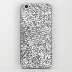 Metallic (Silver) iPhone & iPod Skin