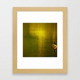 Gold Water I Framed Art Print
