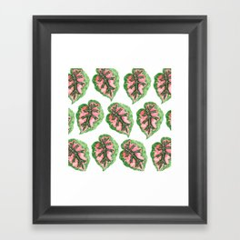 Begonia Leaf Pattern Framed Art Print