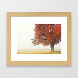 Foggy Autumn Framed Art Print