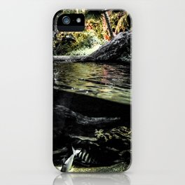Worlds Divided iPhone Case
