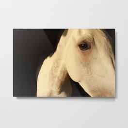 Emotinal Animals Metal Print