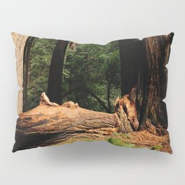 Muir Woods Pillow Sham