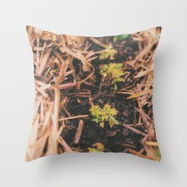 From little things. Throw Pillow
