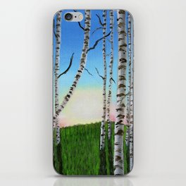 Birch Trees at Sunset iPhone Skin