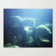 Aquarium of the pacific  Canvas Print