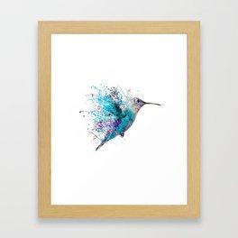 HUMMING BIRD SPLASH Framed Art Print