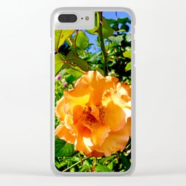 Hyde Park Flowers Clear iPhone Case
