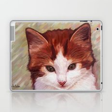 Copper kitten Laptop & iPad Skin