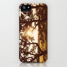 Warm sunset through trees. Holme Hale, Norfolk, UK. iPhone Case