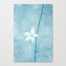 tenro Canvas Print