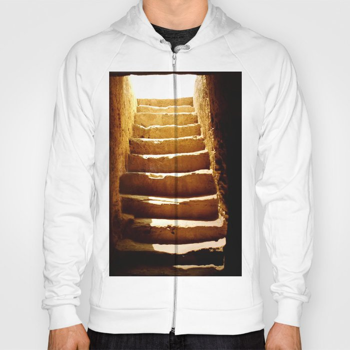 Steps to tomb Hoody