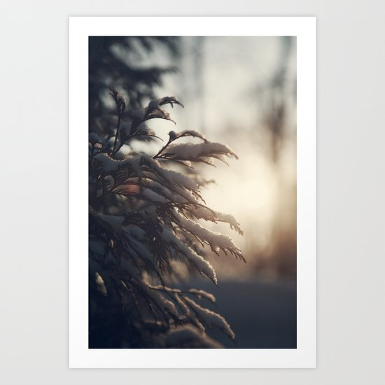 Winter Morn Art Print