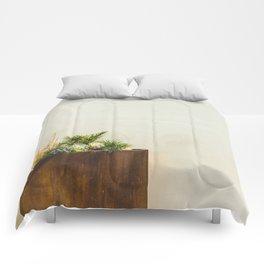 Palm Springs Comforters
