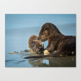 River Otter Meets Crab Canvas Print