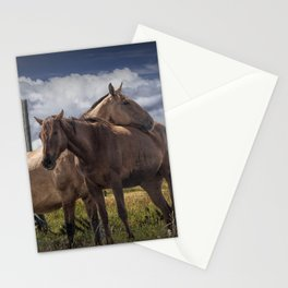 Western Horses in the Pasture by a Wooden Fence Stationery Cards