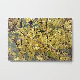 Yellow Tree Metal Print