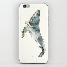 Humpback Whale iPhone & iPod Skin