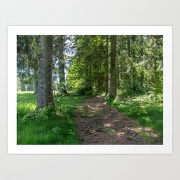 Hiking Trail - Landscape Photography Art Print