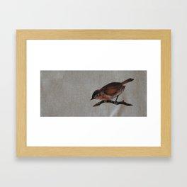 A red Bird Framed Art Print