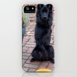 """Could you throw this for me?"" iPhone Case"