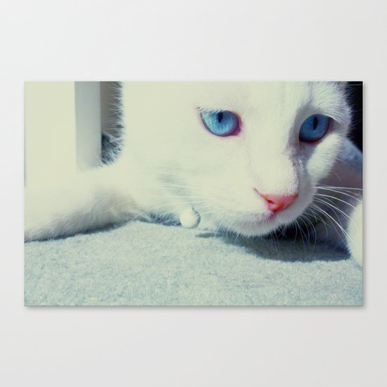sluggish Canvas Print