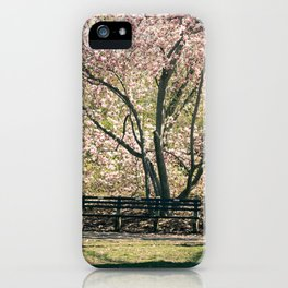Magnolia's Bloom in Central Park iPhone Case