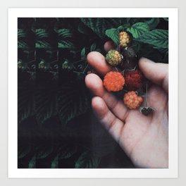 Psychadellic Berries Art Print