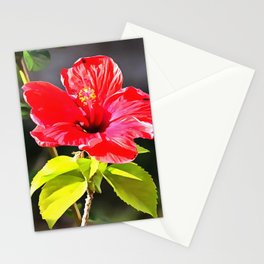 Beautiful Red Tropical Hibiscus Flower Stationery Cards