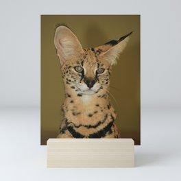 Serval Mini Art Print