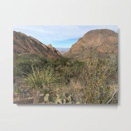 Window in Chisos Basin Metal Print