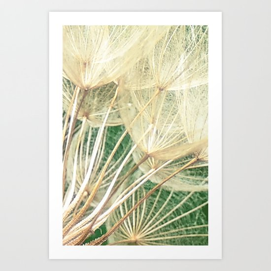 Beauty Within Art Print
