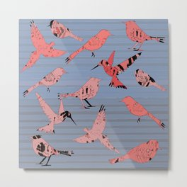 Pink birds, denim stripe Metal Print