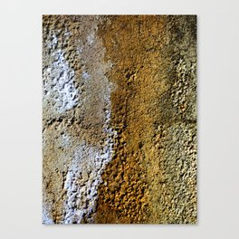 Stained Stucco Canvas Print