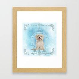 Cute little havanese puppy Framed Art Print