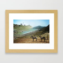 Seabras Framed Art Print