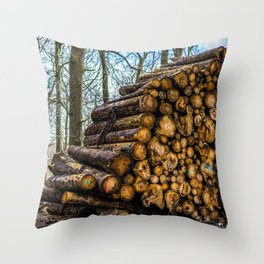 Poltery Site (Wood Storage Area) After Storm Victoria Möhne Forest 3 Throw Pillow