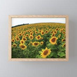 Sunflowers 22 Framed Mini Art Print
