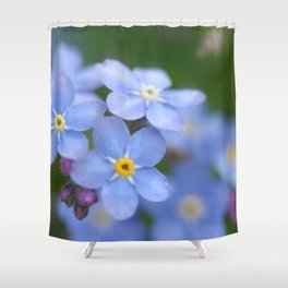 Flowers Izby Garden 4 Shower Curtain