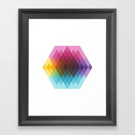 Fig. 022 Framed Art Print